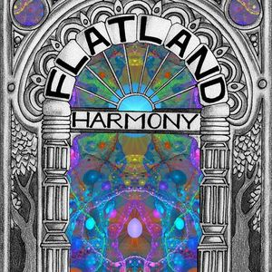 Flatland Harmony Experiment Wasser Brewing Co
