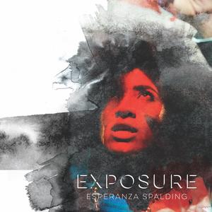 Esperanza Spalding Carhartt Ampitheater Stage