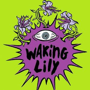 Waking Lily The Pinch