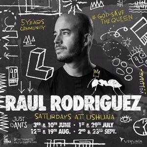 dj raul rodriguez In The Dark (HI Ibiza)