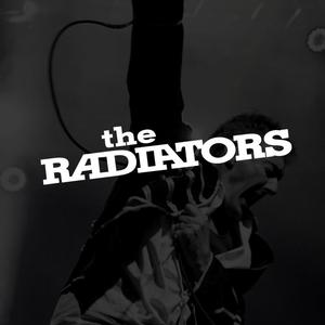 The Radiators Parkwood Tavern