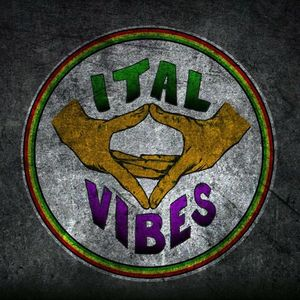 Ital Vibes Flagstaff Brewing Company