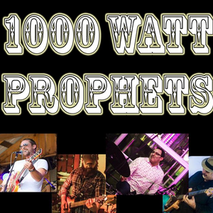 1000 Watt Prophets The Mitten Bar: A Michigan Ideology