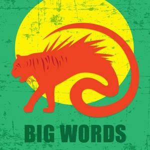 Big Words Mexicali Live