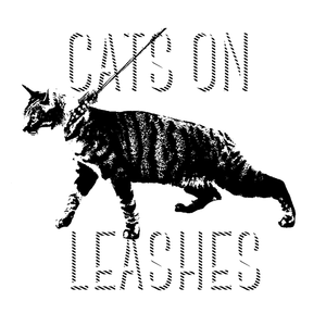 Cats On Leashes The Frequency