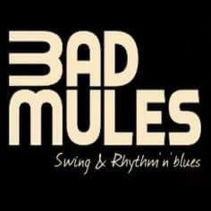 BAD MULES La Rochelle
