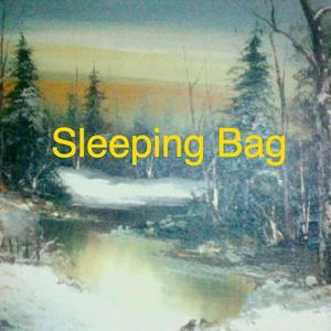 Sleeping Bag Cobra