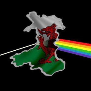 Welsh Floyd The Diamond