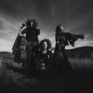 Trio Zéphyr Le Zèbre de Belleville