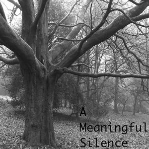 A Meaningful Silence Devizes