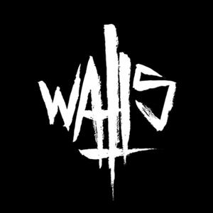 Walls (BE) Plzen