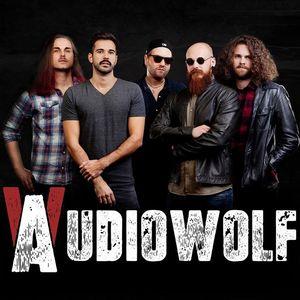 Audiowolf Burnout Festival