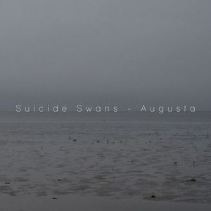 Suicide Swans The Triffid