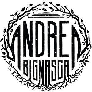 Andrea Bignasca Stans