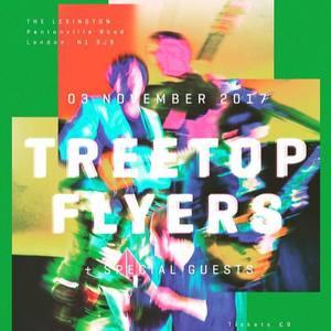 Treetop flyers St Edith Hall, Kemsing