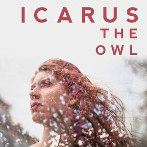 Icarus The Owl Rock City Studios