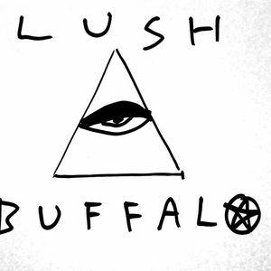 Lush Buffalo Sneaky Dee's Concert Venue