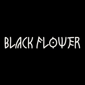 Black Flower Montesson