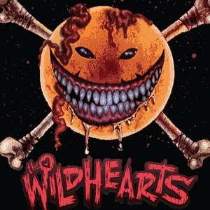 The Wildhearts Wimborne Minster