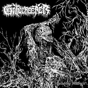 Gatecreeper Mountlake Terrace