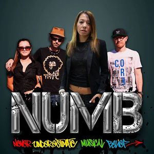 Never Underestimate Musical Belief (N.U.M.B) OFFICIAL PAGE Old Pier Tavern