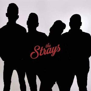 The Strays (UK) Coleford