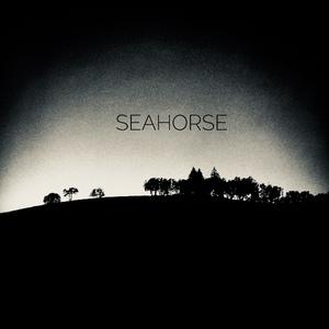 Seahorse (US) Corvallis