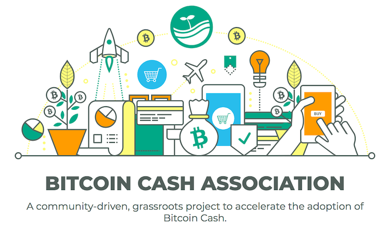Bitcoin Cash Association
