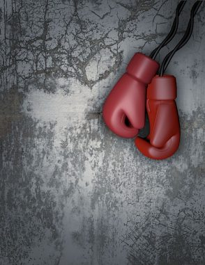 Gemini dollar soars boxing gloves