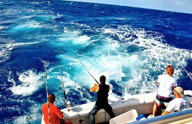 SoBeautiful Lifestyle - sail-sport-fishing