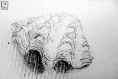 Scribble Drawing Process : Wood burning and the art process