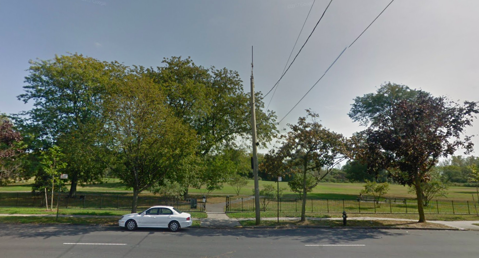 Armless, Legless Human Torso Found In Brooklyn Park