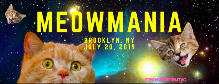Meowmania: Celebrate Cats & Raise Money For Rescue Groups