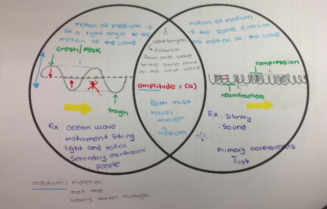 Intro To Waves Venn Diagram Betterlesson