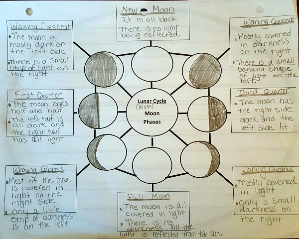 Moon Phase graphic organizer
