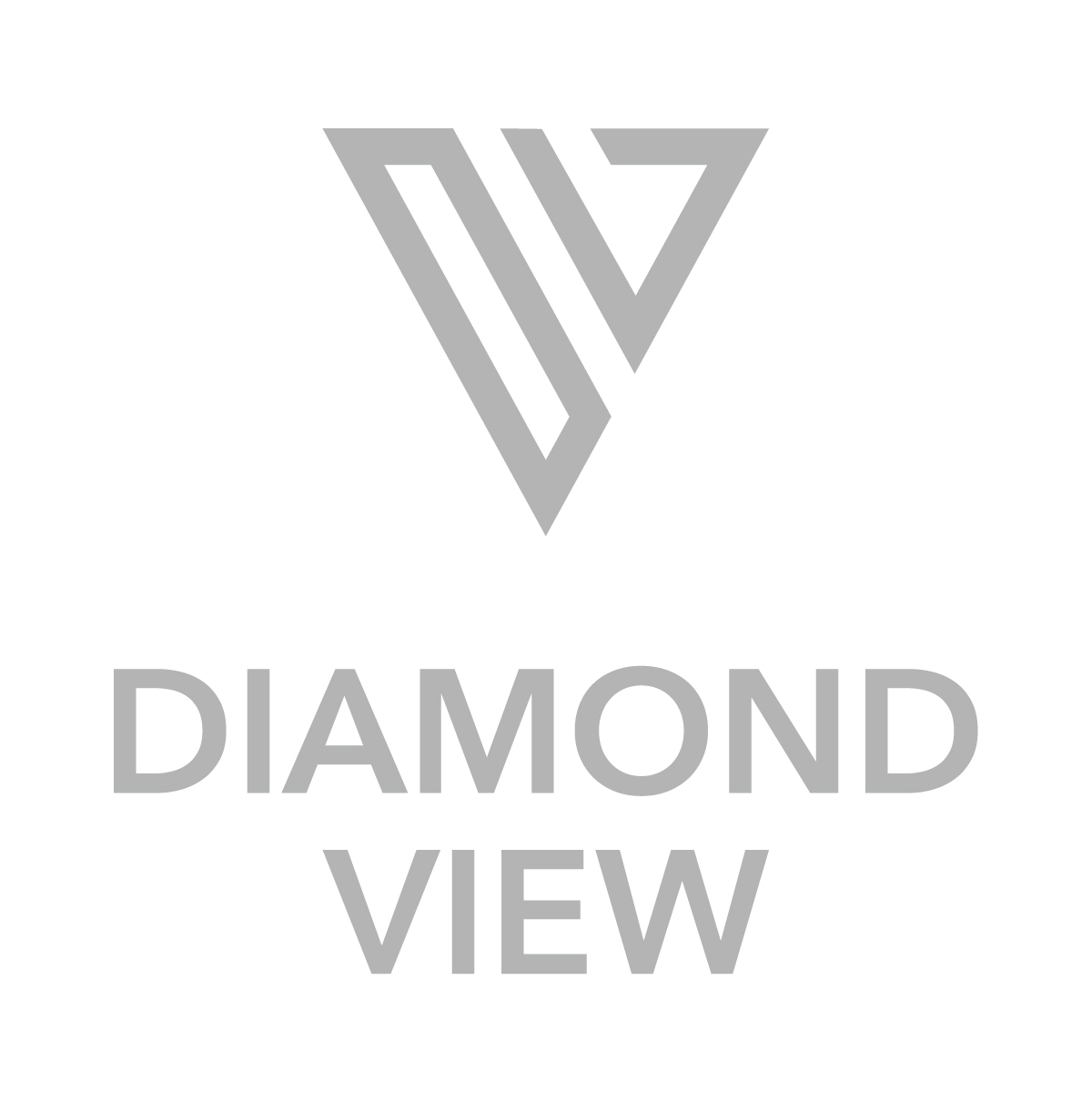 Logo for Diamond View