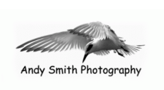 Logo for Andy Smith Photography