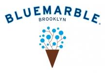 Logo for Blue Marble Ice Cream, LLC