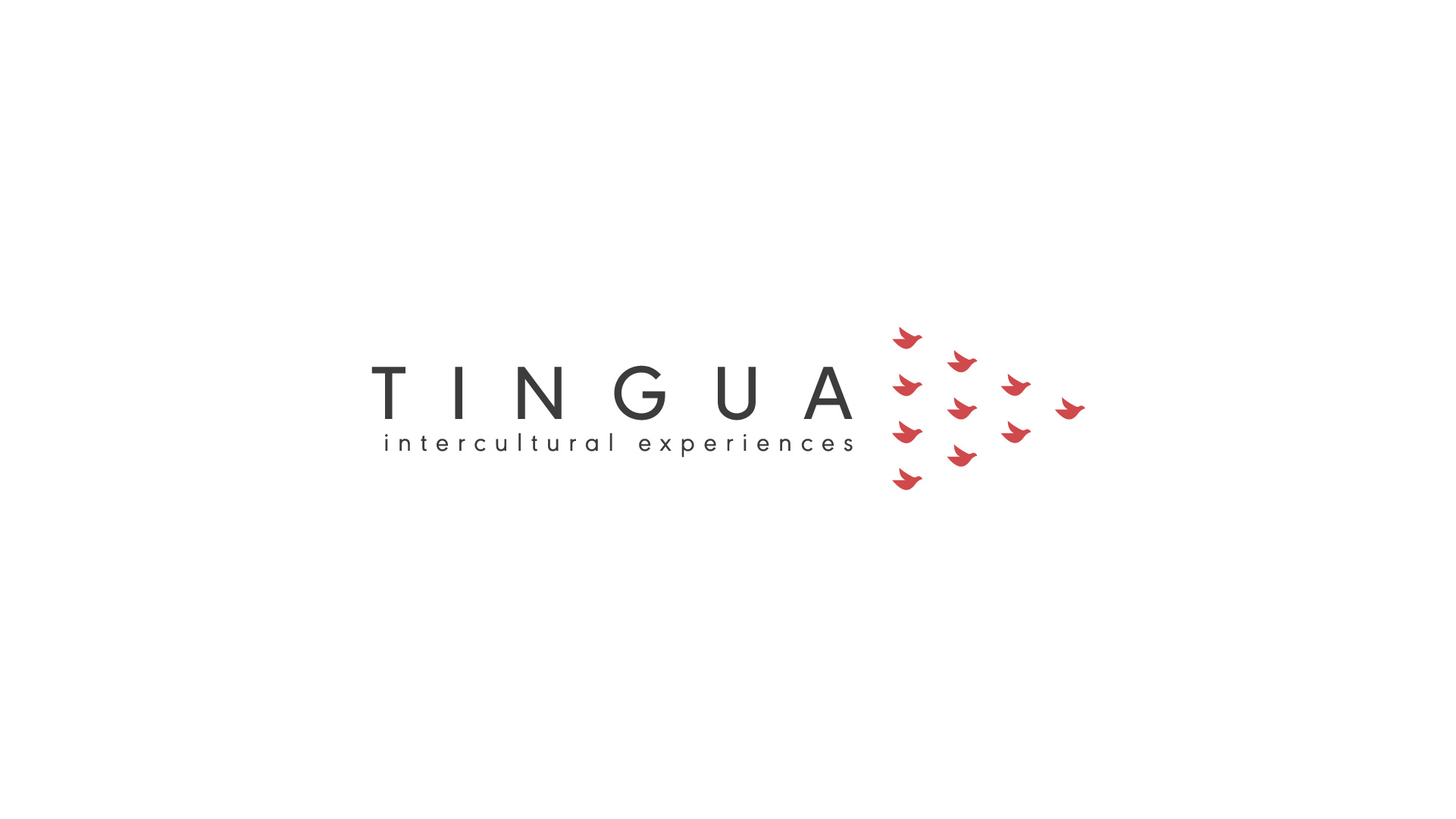 Logo for TINGUA