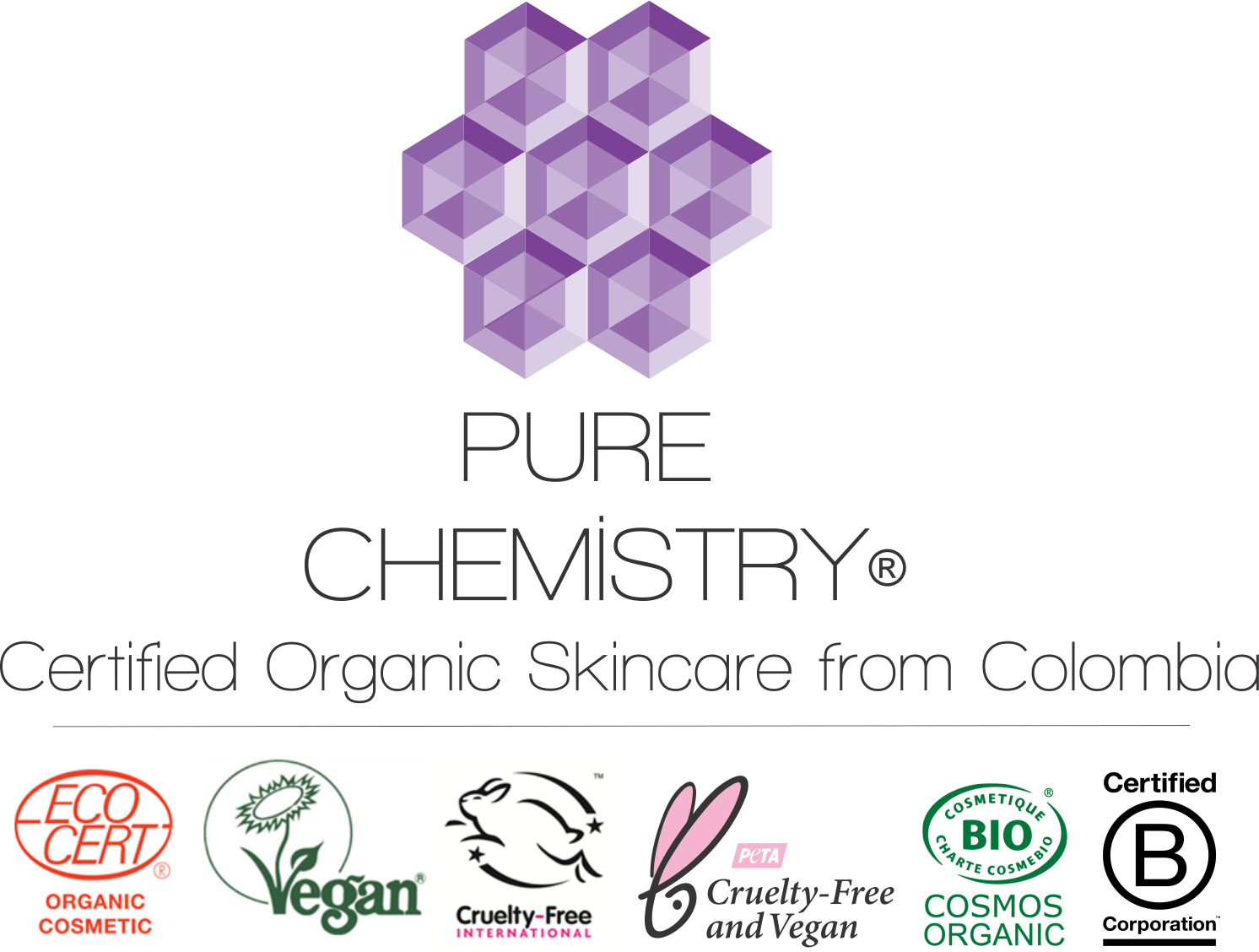 Logo for PURE CHEMISTRY S.A.S.