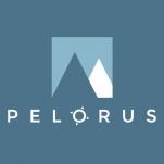 Logo for Pelorus Consulting