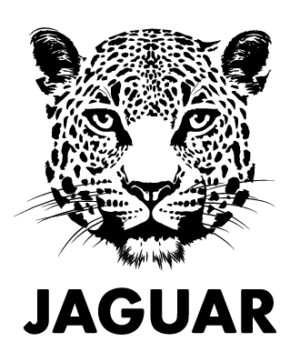 Logo for Jaguar