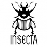 Logo for Insecta Shoes