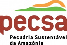 Logo for Pecsa