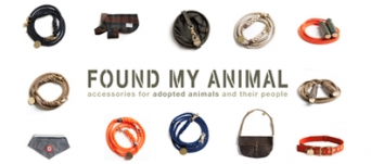 Logo for Found My Animal