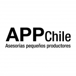 Logo for APP Chile