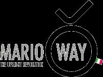 Logo for Marioway Srl SB
