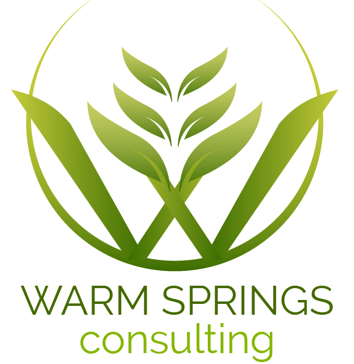 Logo for Warm Springs Consulting LLC