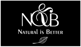 Logo for N&B Srl