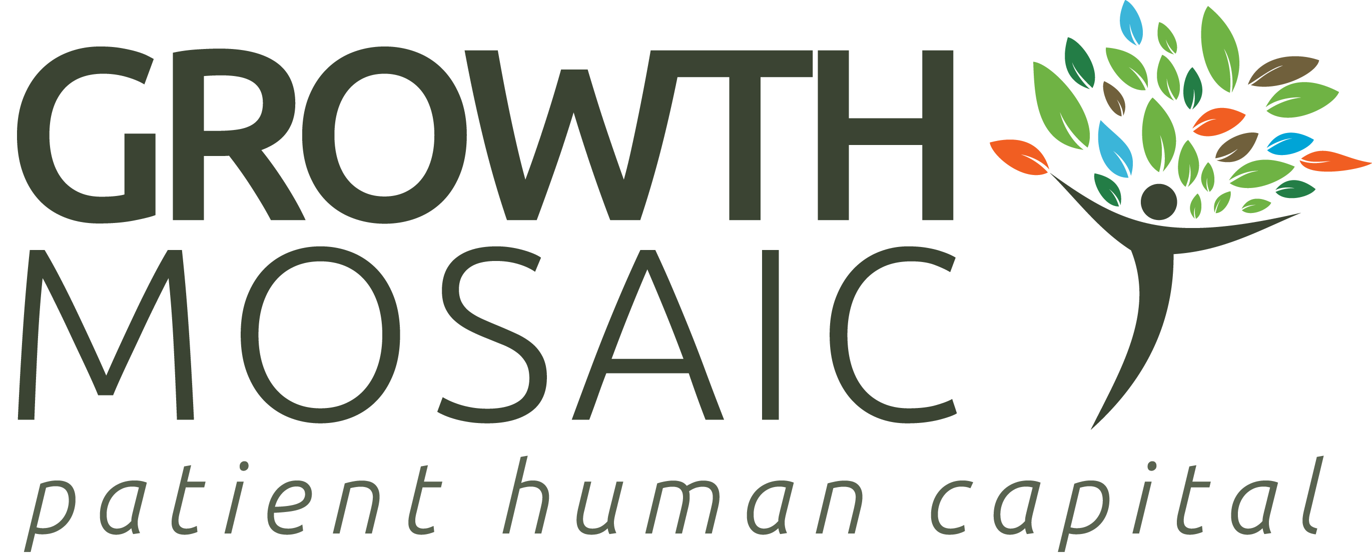 Logo for Growth Mosaic Ltd.